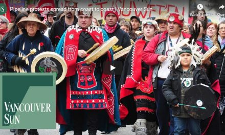 Who is behind solidarity action for Wet'suwet'en hereditary chiefs?