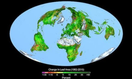 Breaking down the last decade of climate change in 7 charts